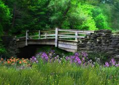 Wild flowers by a Country Bridge Country Life, Country Living, Country Roads, Country Charm, Beautiful World, Beautiful Places, Peaceful Places, Simply Beautiful, Cool Pictures