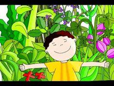 Cuento para niños: El Coleccionista de Semillas