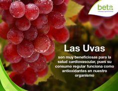 Los beneficios que traen las uvas para la salud. ¡Beta, creciendo juntos!