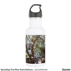 Sprawling Tree Near Santa Barbara on Coast 18oz Water Bottle