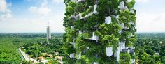 A 46 floor garden – the new heated bicycle? • Gardening Blog • 99Roots.com