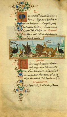 The donkey in the lion's skinAesop.Fables(The Medici Aesop). In Greek. Manuscript on vellum, 1480