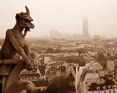Climbing to the top of Notre Dame Cathedral, Paris