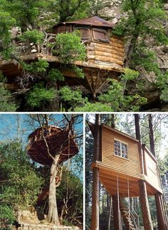 Branch Out: 20 Organic Tree Houses Are Naturally Amazing