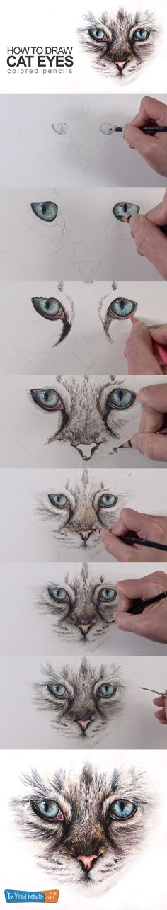 Learn how to draw cat eyes with colored pencils in this lesson. #coloredpencils #drawing #artlessons