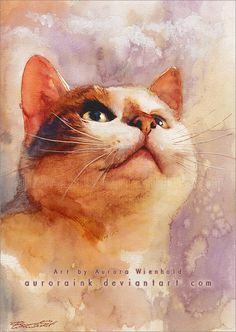 Cat in watercolor: The irresistible look