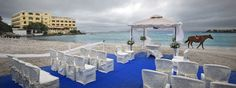 Matrimonio in spiaggia - Hotel Gabbiano Azzurro