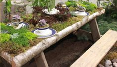 The Wild! theme at has encouraged interesting design choices and novel ways of using traditional materials. Picnic Table, Garden Bridge, Houseplants, Botanical Gardens, Choices, Garden Ideas, Cool Designs, Planters, Bloom