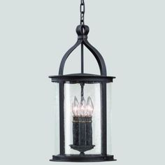 Scarsdale Outdoor Pendant by Troy Lighting