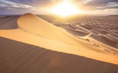 Sand dune in the desert HD Wallpaper