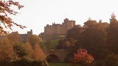 alnwick-castle-landscape-copyright-alnwick-castle.jpg (613×343)