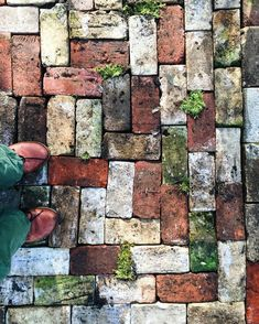 garten pflaster The floor of the greenhouse. One day I was hiking through the woods here and came across a perfectly square stack of old, old bricks. Brick Garden, Garden Paving, Garden Paths, Brick Walkway, Cobblestone Walkway, Old Bricks, Garden Projects, Garden Inspiration, Backyard Landscaping