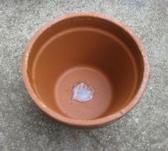 Self Watering Tray_04 Self Watering, Easy Projects, Tray, Tableware, Plants, Gardening, Dinnerware, Tablewares, Lawn And Garden