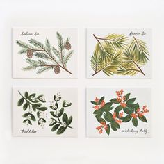 Winter Follage Card Set Of 8 now featured on Fab.