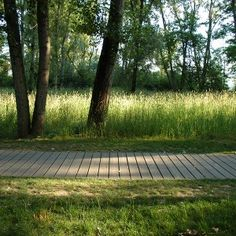 Feyssine_Park_by_Iles_Paysage_Urbanisme - My favorite biking path « Landscape Architecture Works Park Landscape, Urban Landscape, Landscape Design, Modern Landscaping, Garden Landscaping, Plant Design, Garden Design, Urban Design Plan, Urban Park