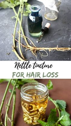 Made of nettle roots this potent stinging nettle extract possesses many medicinal benefits that might help to stimulate hair growth or increase the flow rate and urinary volume in men.