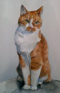 Tom - Joanne Jarry - watercolor