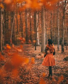 A fox is a wolf who brings flowers.🦊🦊🦊 by Rebecca A Clothes Horse - - Dream Photography, Autumn Photography, Portrait Photography, Autumn Aesthetic, Aesthetic Photo, Autumn Tale, Fall Portraits, Fall Pictures, Foto Pose