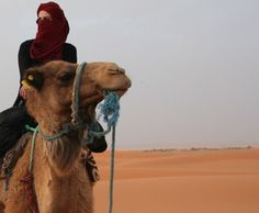 hOPE ONE DAY I CAN BE AT THE DESSERT AND FEEL IT WITH MY CAMEL!