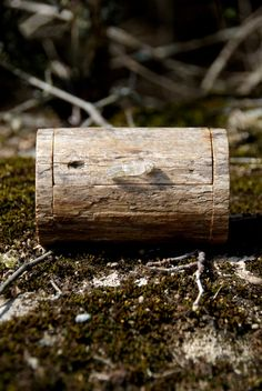 Natural driftwood bandsaw box with quartz handle - Tidewreck.