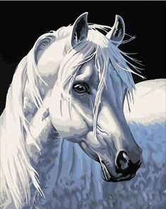 New-DIY-Acrylic-Paint-By-Number-16X20-034-kit-Oil-Painting-On-Canvas-White-Horse