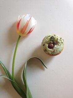Tulip + cupcake