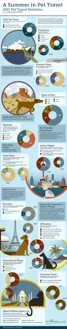 #Pet Travel Statistics | #infographic #travel