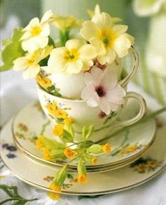 Tea cups perfect for spring time tea