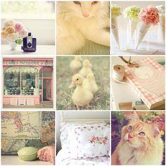 Pink Spring Collage