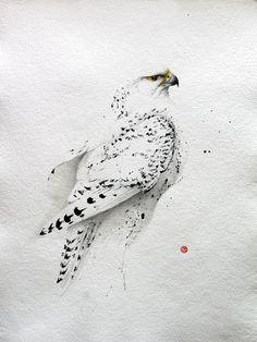 Karl Mårtens - www.se water color bird of prey illustration Watercolor Bird, Watercolor Animals, Watercolor Paintings, Watercolor Portraits, Watercolor Landscape, Abstract Paintings, Watercolor Artists, Watercolours, Art Paintings