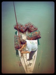 Pulling #lobster traps in #Ogunquit Maine  www.ogunquitbeachinn.com