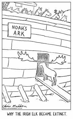 Why the Irish Elk is extinct