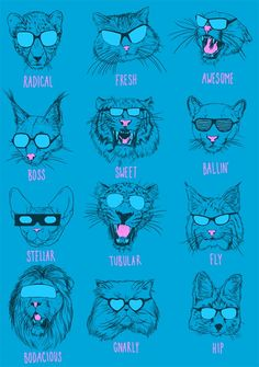 This is one of my favorite Threadless designs by Torakamikaze! PRINT IT! Cool Cats by Torakamikaze Cartoon Drawings, Cool Cats, Design Art, Print Design, Fur Babies, Print Patterns, Dog Cat, Illustration Art, Kitty