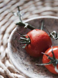 Tomatoes. #daleholman #daleholmanmaine