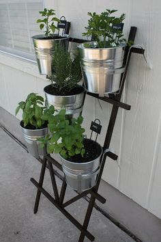 Hanging potted herb garden with instructions on www.fabeveryday.com. Trellis from Home Depot and hanging pots from Ikea.  Great, non-permanent option for growing herbs on an apartment patio, a rental property, or when you just can't commit to what to do with your yard landscaping (like me).