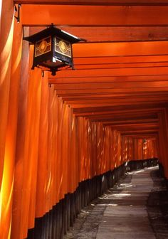"Fushimi-Inari Kyoto, JAPAN. I have to run through here like from the movie ""Memoirs of a Geisha"""
