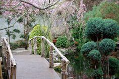 Japanilainen puutarha #vantaa #finland