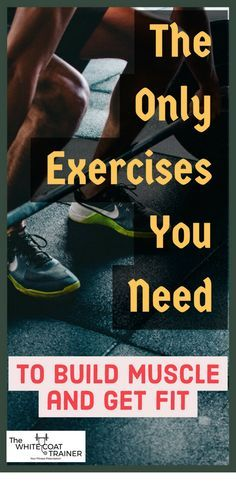 The Only Exercises You Need to Create Effective Workouts & Get in Shape