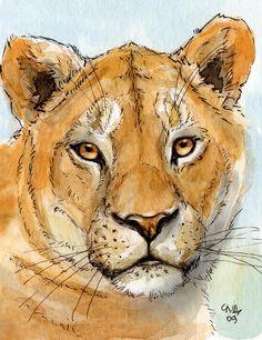 Lioness Painting by Svetlana Ledneva-Schukina Watercolor Illustration, Watercolor Paintings, Watercolors, Zentangle, Lion Art, Animal Sketches, Watercolor Animals, Animal Paintings, Illustrations
