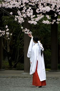 Miko (巫女) are the women who tend to Shinto shrines in Japan. They were once known for being shamanistic, but in modern era they're considered attendants to the shrine. An inspiring photo for working on Aki. Japanese Prints, Japanese Kimono, Japanese Girl, Geisha, Shrine Maiden, Heian Era, Japanese Outfits, Japan Art, Nihon