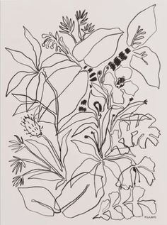 Charcoal Tropics Mini Art Print by Megan Galante - Without Stand - x Canvas Prints, Art Prints, Line Drawing, Manga Drawing, Drawing Tips, Pattern Illustration, Art Drawings, Pencil Drawings, Hipster Drawings