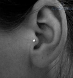ear piercing tragus stud | pictures tragus piercing with tiny studs for ear tragus piercing ...