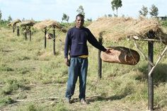 AFRICA - A fence design that promotes beekeeping and helps save elephants.