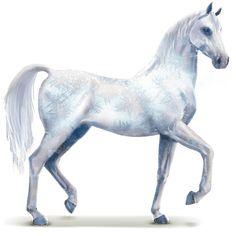 Frost, Vodní kůň Frost #18147713 - Howrse