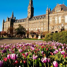 Georgetown University: My daughter is getting her Master's Degree in Museum Studies from here College Campus, College Life, Boston College, Ucla Campus, College Board, Georgetown University, Georgetown Campus, Boston University, Dream School