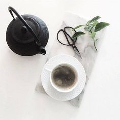 Tomar té verde tiene muchos beneficios y aparte puedes hacer un exfoliante #DIY con los restos del té, sólo agrégales un poco de miel de abeja y ¡listo!   #GaraMeansGood