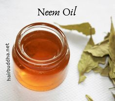 Neem oil is fantastic for dandruff, eczema and acne. Neem oil also boosts hair growth. Check out benefits of neem oil for hair Oils For Dandruff, Hair Dandruff, Neem Oil For Hair, Hair Oil, 4c Hair, Homemade Hair Growth Oil, Natural Hair Recipes, Homemade Conditioner, Hair Conditioner