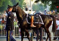 Riderless horse from President Ronald Reagan's funeral procession.  And yes, they are President Reagan's riding boots.