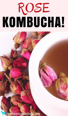 Are you looking for a new kombucha flavor? Then you need to try Rose Kombucha! Did you know that roses are edible? And not only are they edible, but they have wonderful benefits! Imagine the health benefits of roses and kombucha combined! Jun Kombucha, Best Kombucha, Kombucha Flavors, Coffee Kombucha, How To Brew Kombucha, Kombucha Recipe, Best Probiotic, Probiotic Foods, Fermented Foods