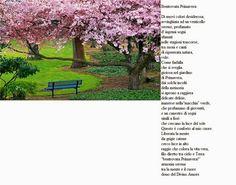 Poesia...un benvenuto alla Primavera..